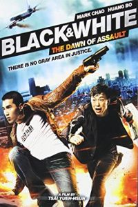 Black & White: The Dawn of Justice (Pi Zi Ying Xiong 2) (2014)