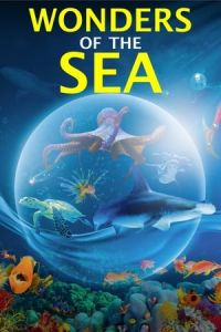 Wonders of the Sea (Wonders of the Sea 3D) (2017)